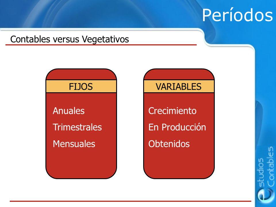 Períodos Contables versus Vegetativos FIJOS VARIABLES Anuales