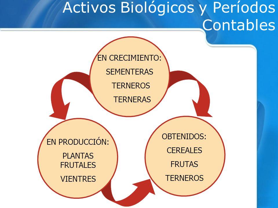 Activos Biológicos y Períodos Contables