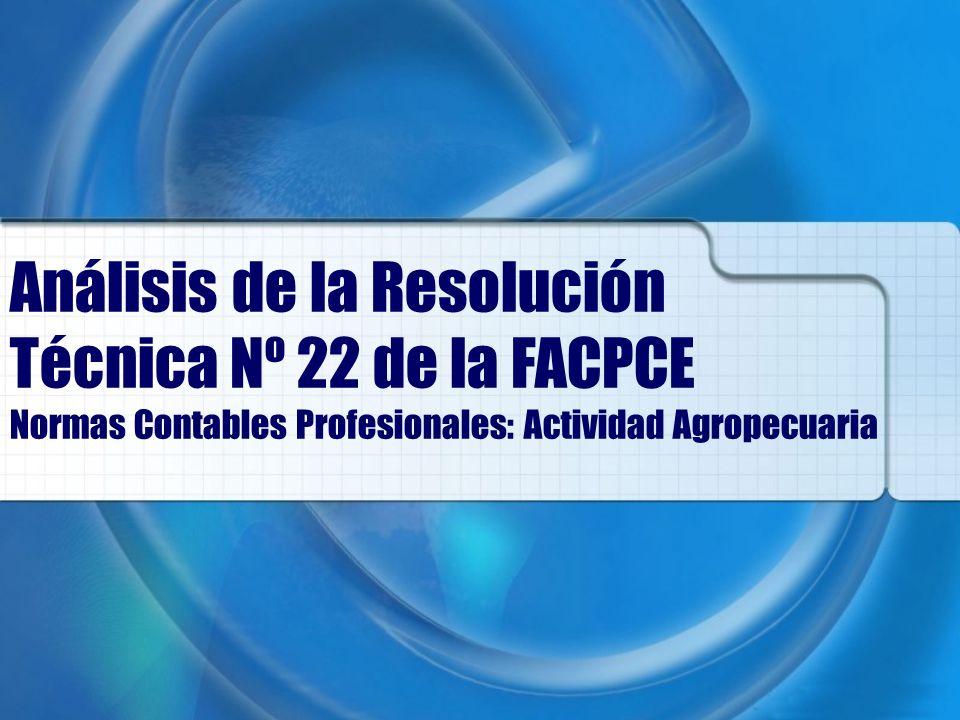 Análisis de la Resolución Técnica Nº 22 de la FACPCE