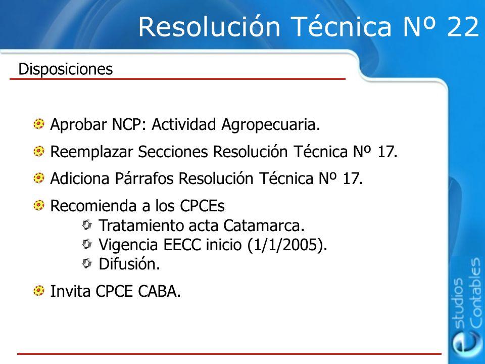 Resolución Técnica Nº 22 Disposiciones