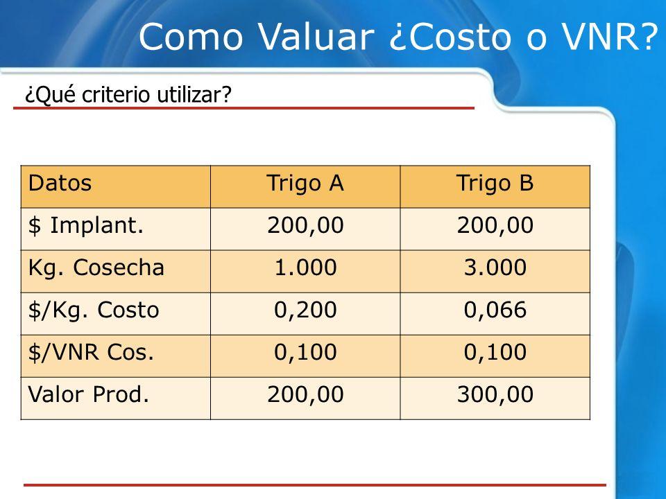 Como Valuar ¿Costo o VNR