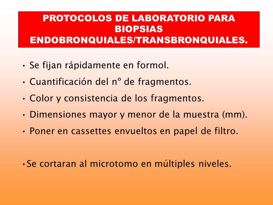 PROTOCOLOS DE LABORATORIO PARA BIOPSIAS ENDOBRONQUIALES/TRANSBRONQUIALES.