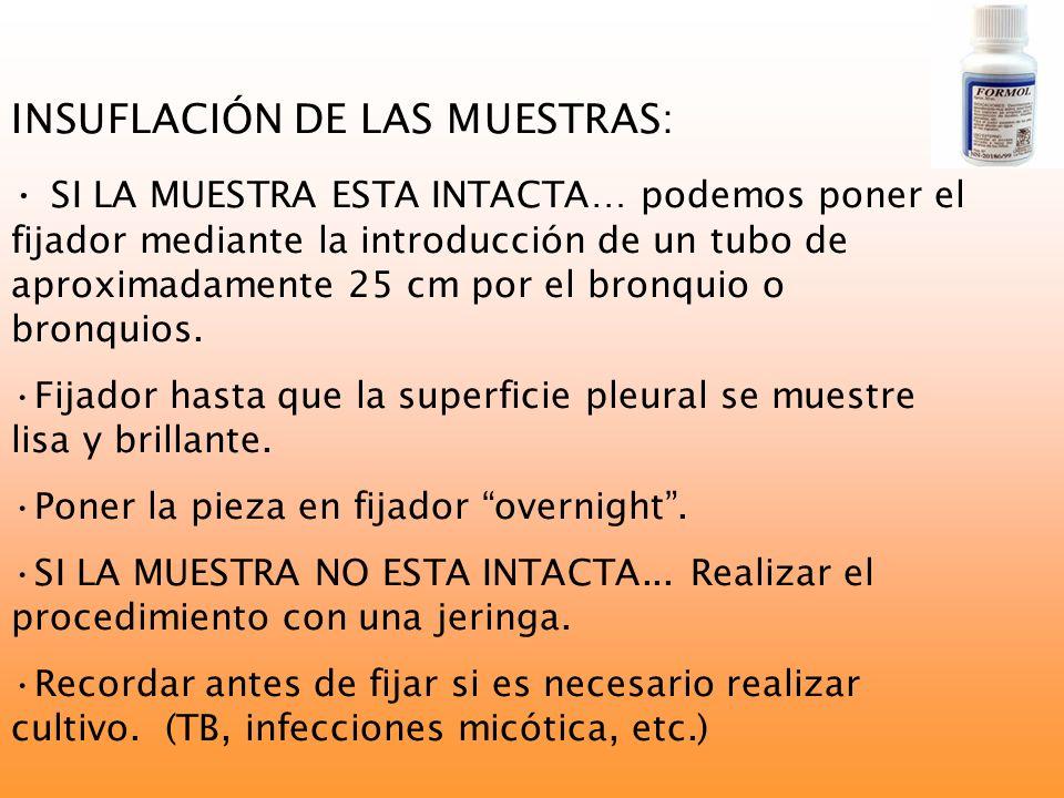 INSUFLACIÓN DE LAS MUESTRAS: