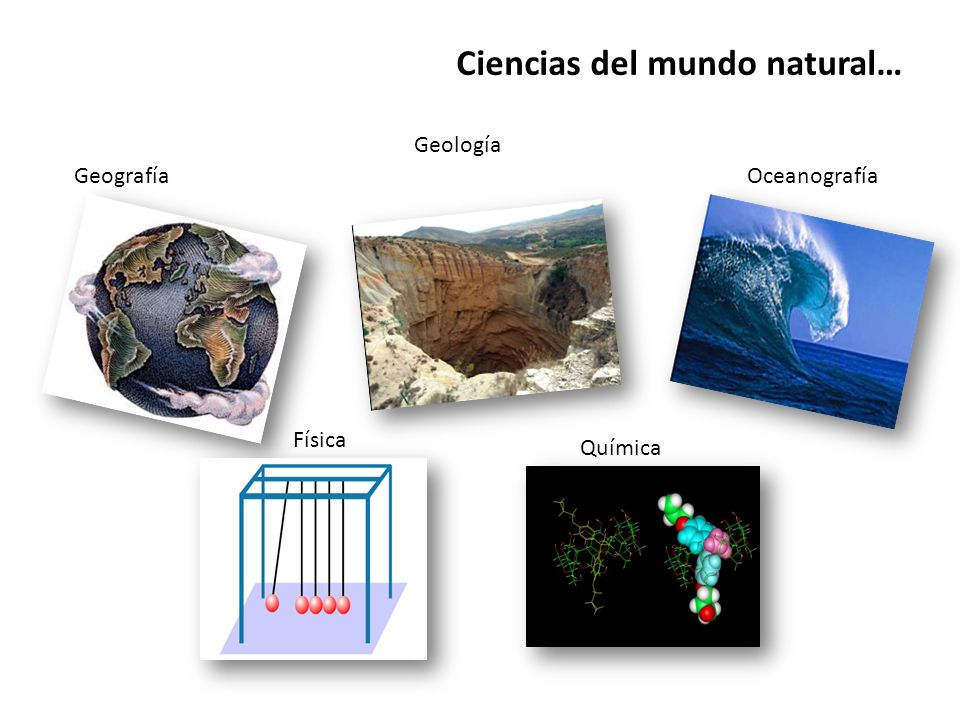 Ciencias del mundo natural…