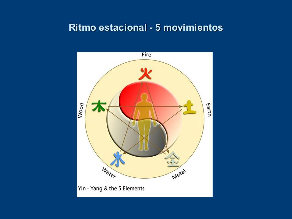 Ritmo estacional - 5 movimientos