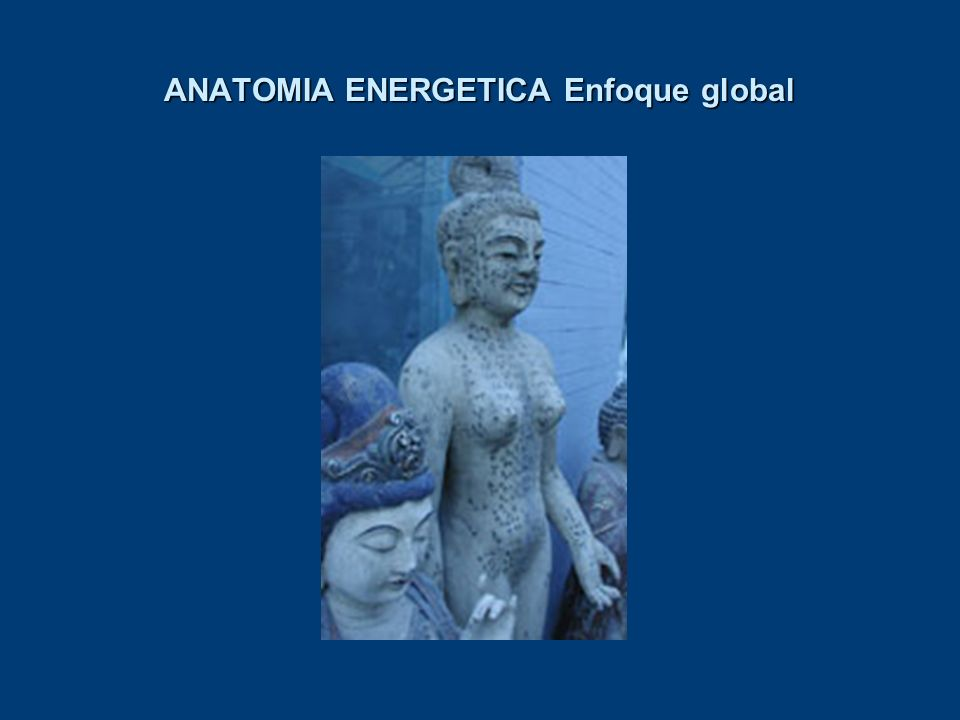 ANATOMIA ENERGETICA Enfoque global