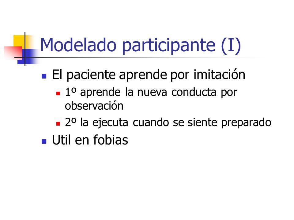 Modelado participante (I)