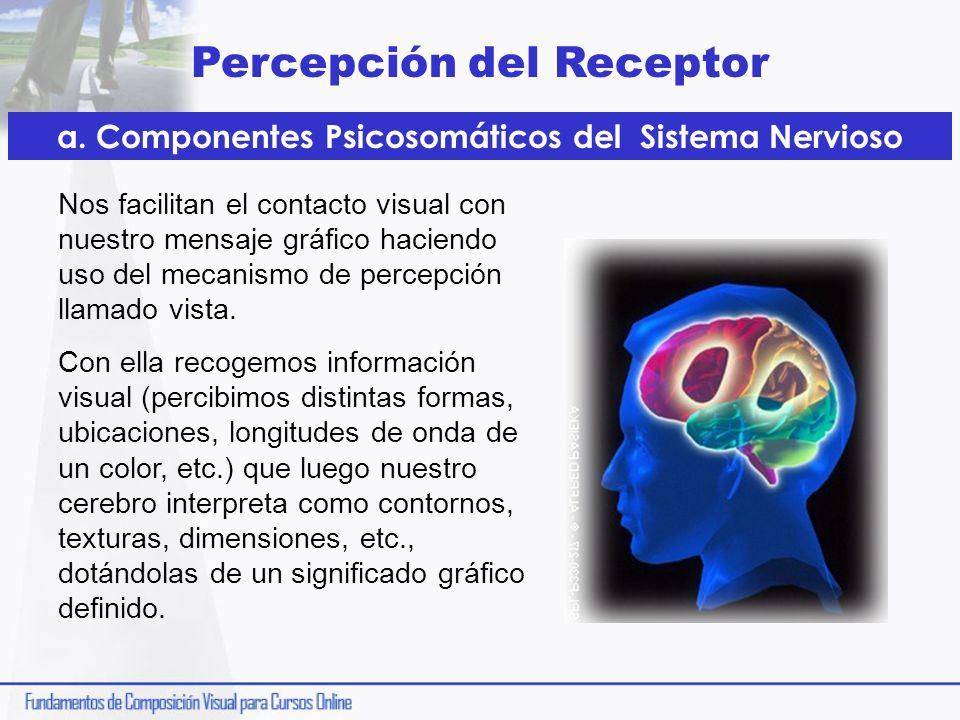 a. Componentes Psicosomáticos del Sistema Nervioso