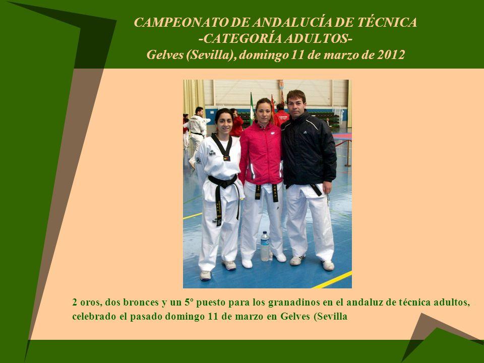 CAMPEONATO DE ANDALUCÍA DE TÉCNICA -categoría adultos- Gelves (Sevilla), domingo 11 de marzo de 2012