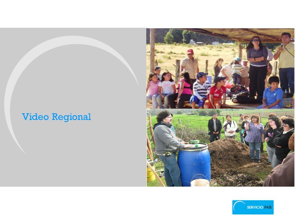 Video Regional El Programa SERVICIO PAIS es el programa de Intervención Social de la FSP.