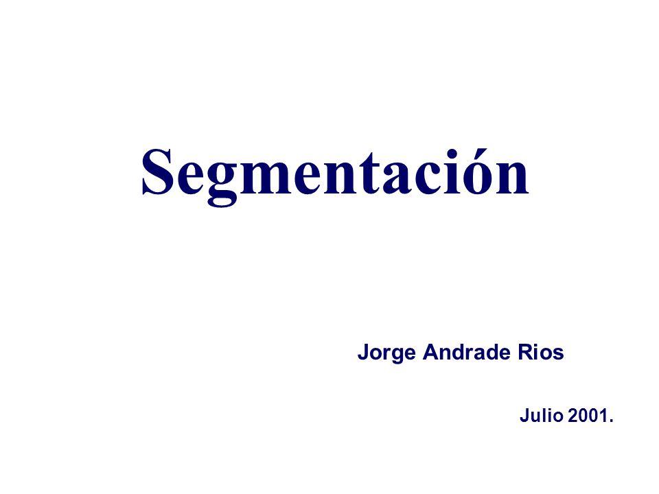 Segmentación Jorge Andrade Rios Julio 2001.