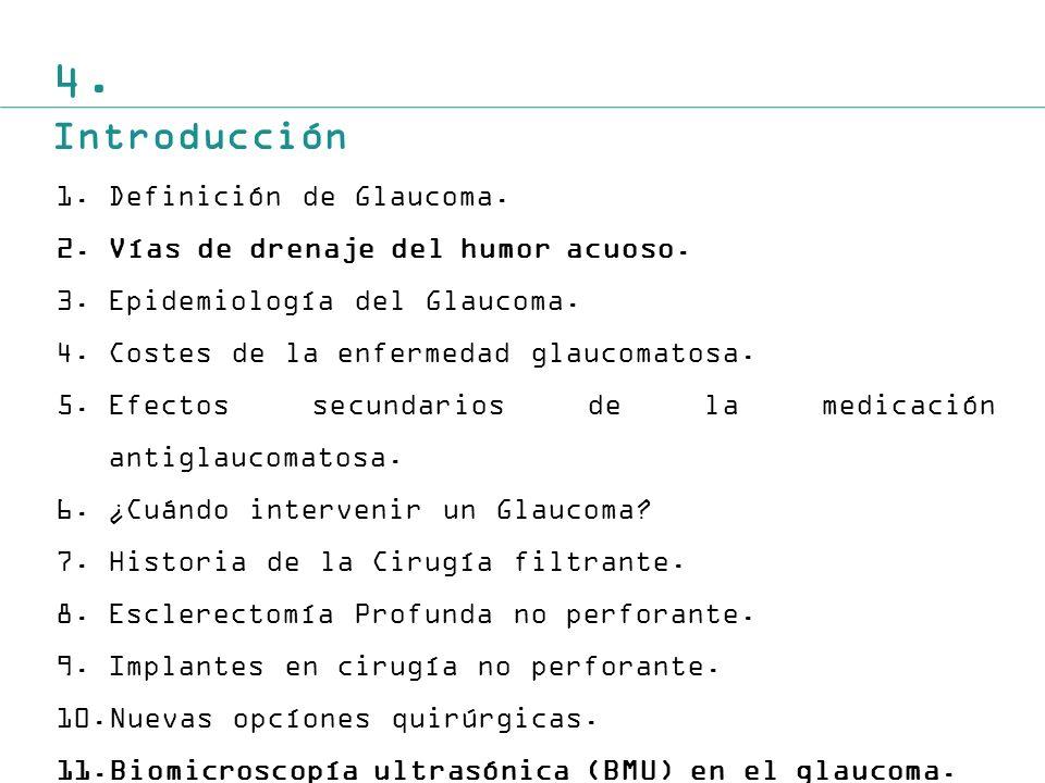 4. Introducción Definición de Glaucoma.