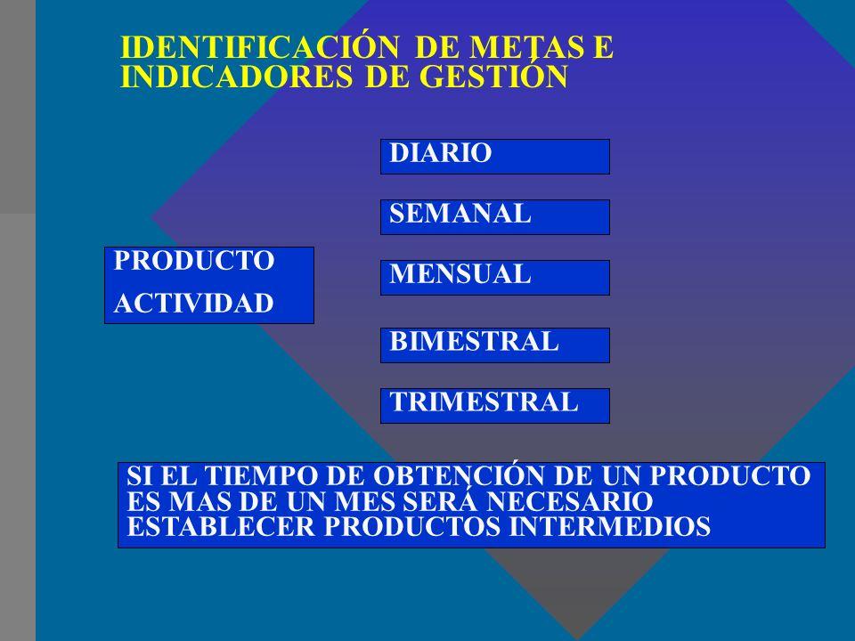 IDENTIFICACIÓN DE METAS E INDICADORES DE GESTIÓN