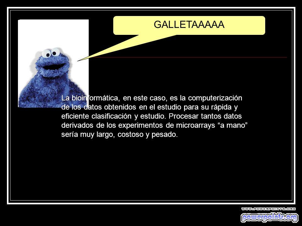 GALLETAAAAA
