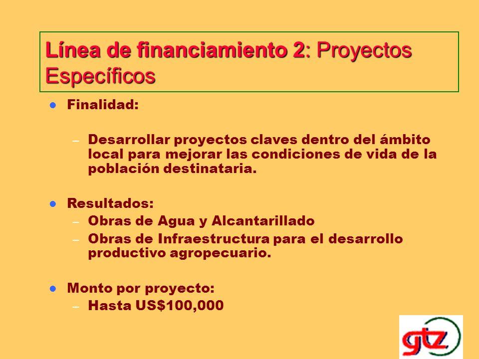 Línea de financiamiento 2: Proyectos Específicos