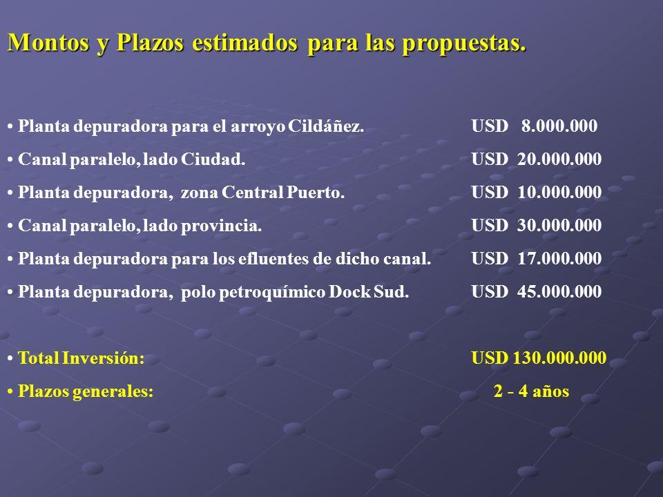 Montos y Plazos estimados para las propuestas.
