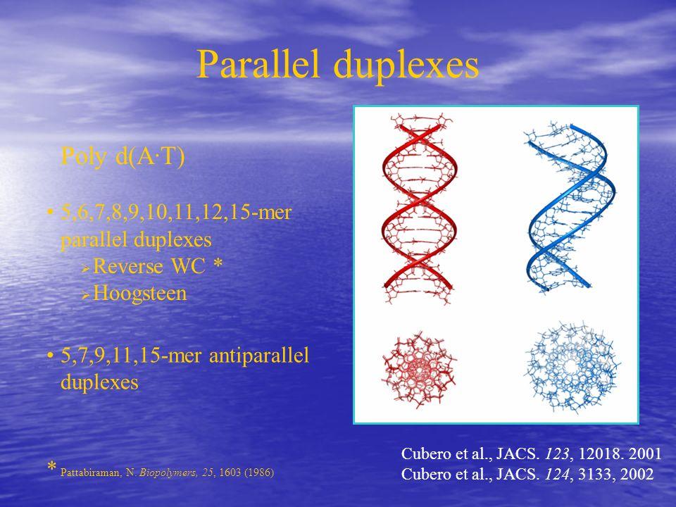 Parallel duplexes Poly d(A·T) 5,6,7,8,9,10,11,12,15-mer