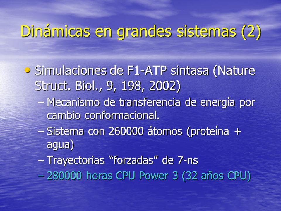 Dinámicas en grandes sistemas (2)