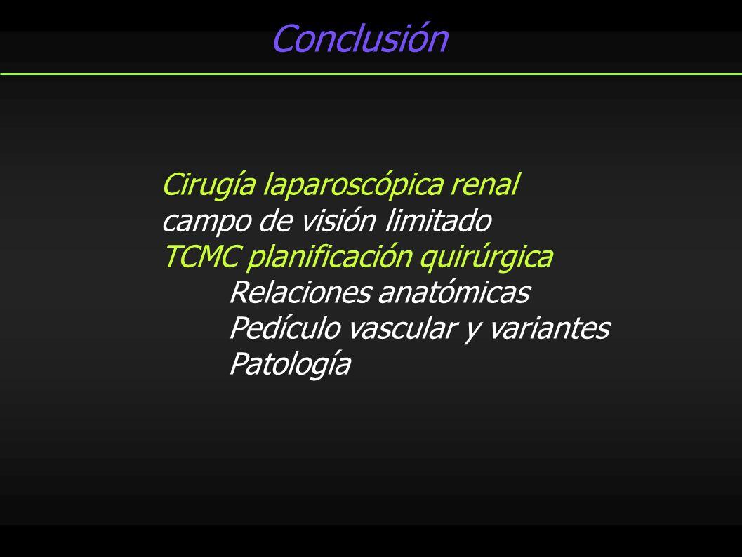 Conclusión Cirugía laparoscópica renal campo de visión limitado