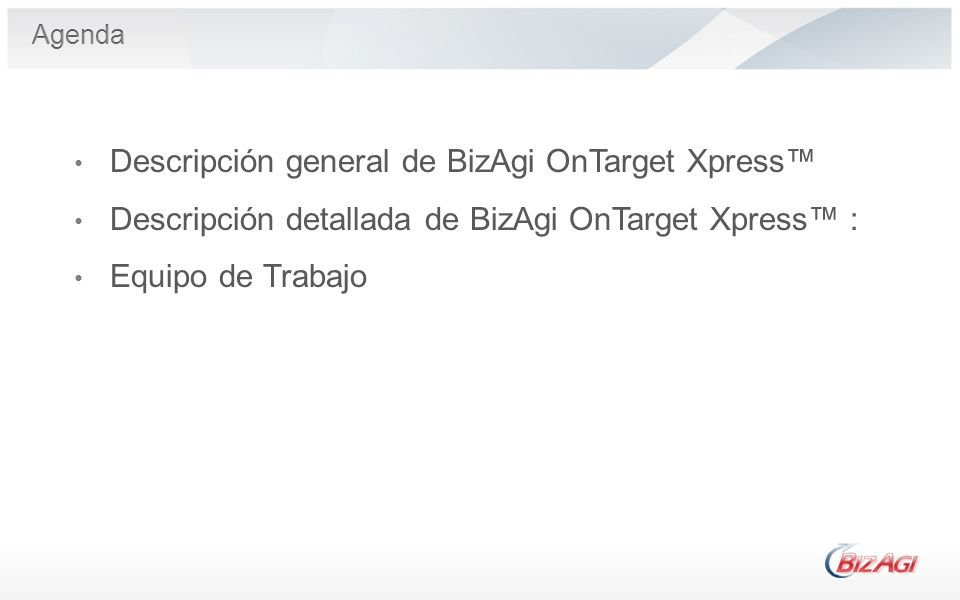 Descripción general de BizAgi OnTarget Xpress™