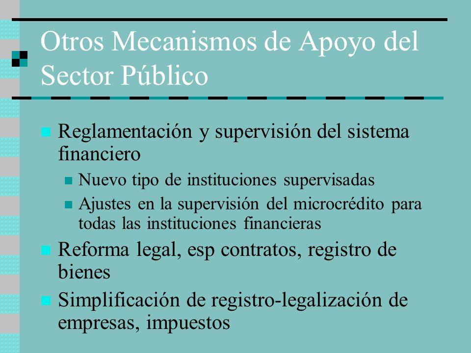 Otros Mecanismos de Apoyo del Sector Público