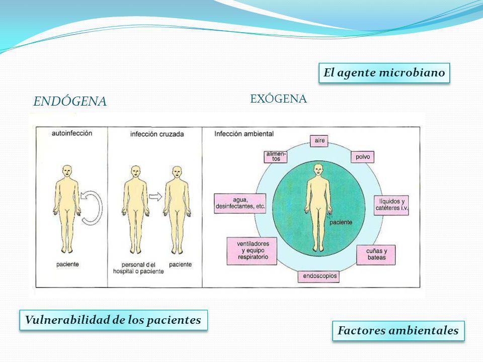 ENDÓGENA El agente microbiano EXÓGENA Vulnerabilidad de los pacientes