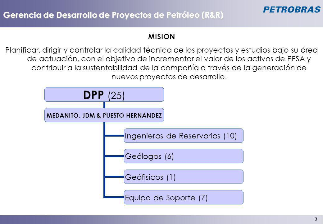 Gerencia de Desarrollo de Proyectos de Petróleo (R&R)
