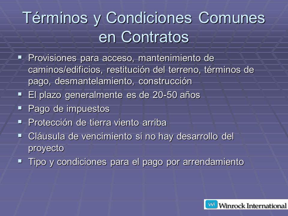 Términos y Condiciones Comunes en Contratos