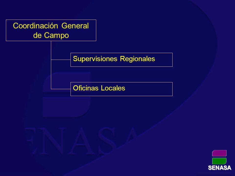 Coordinación General de Campo
