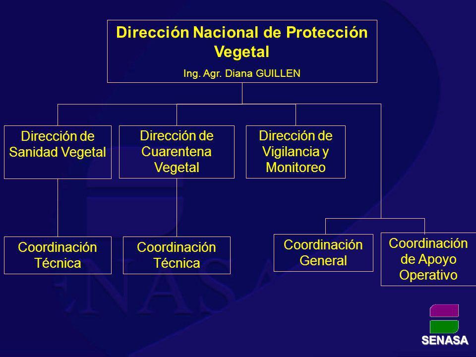 Dirección Nacional de Protección Vegetal