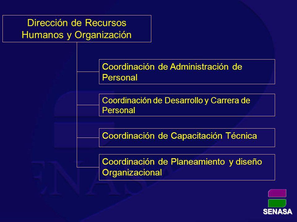 Dirección de Recursos Humanos y Organización