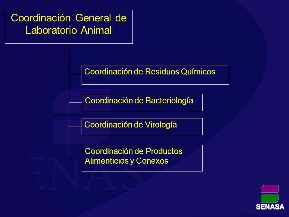 Coordinación General de Laboratorio Animal