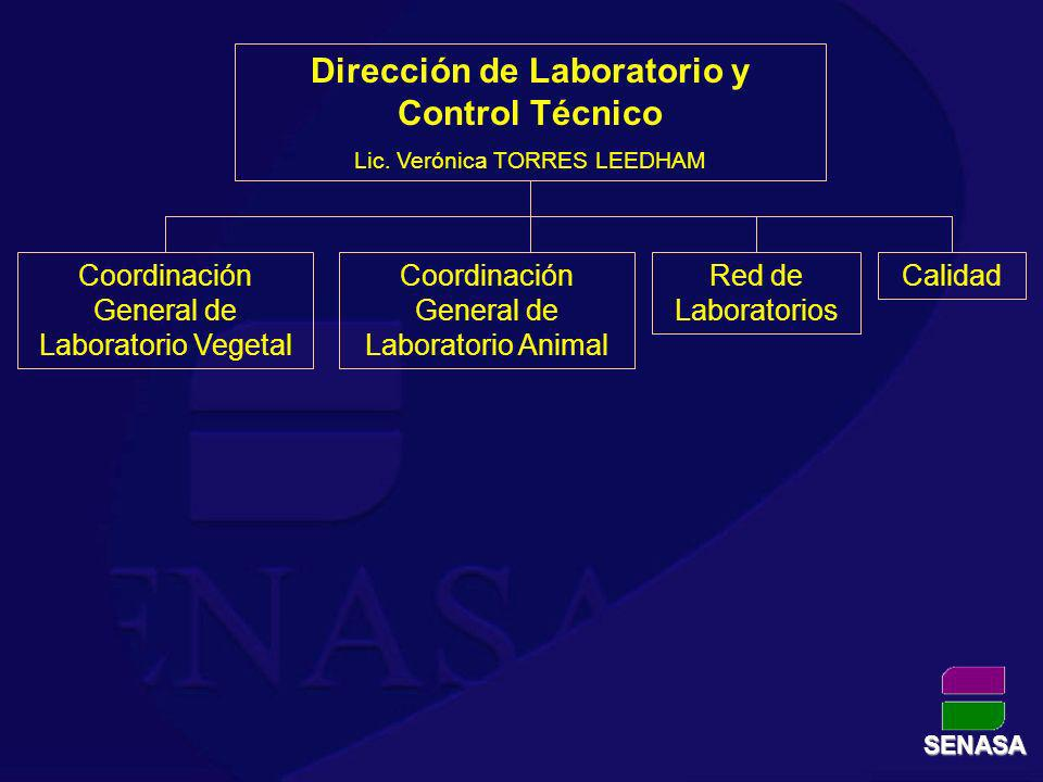 Dirección de Laboratorio y Control Técnico