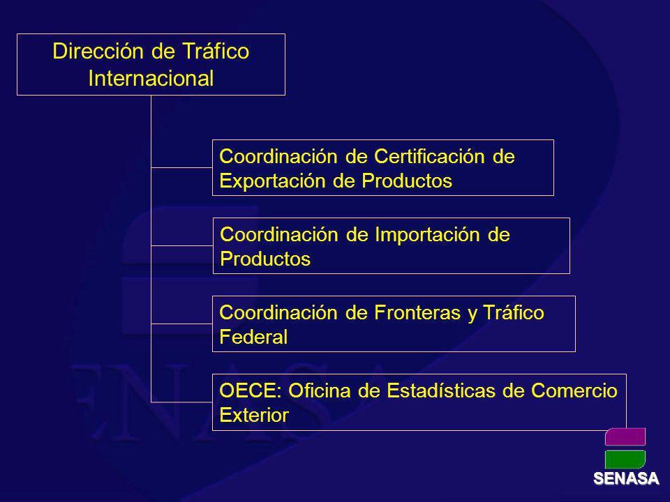 Dirección de Tráfico Internacional
