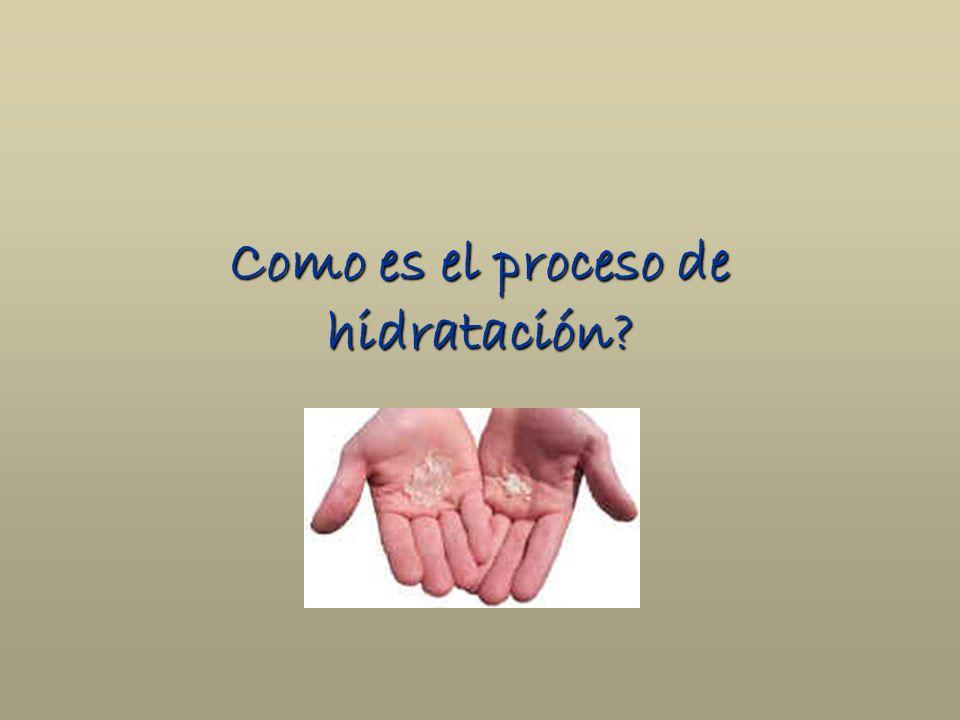 Como es el proceso de hidratación