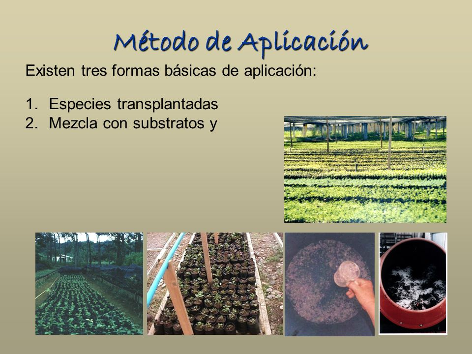 Método de Aplicación Existen tres formas básicas de aplicación: