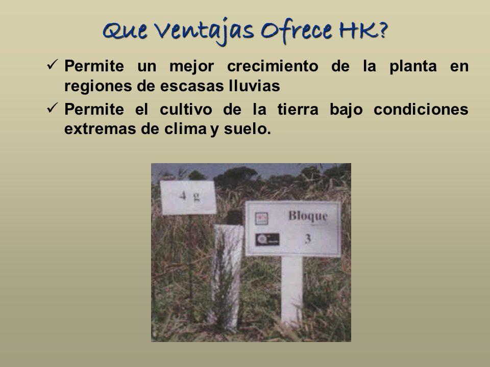 Que Ventajas Ofrece HK Permite un mejor crecimiento de la planta en regiones de escasas lluvias.