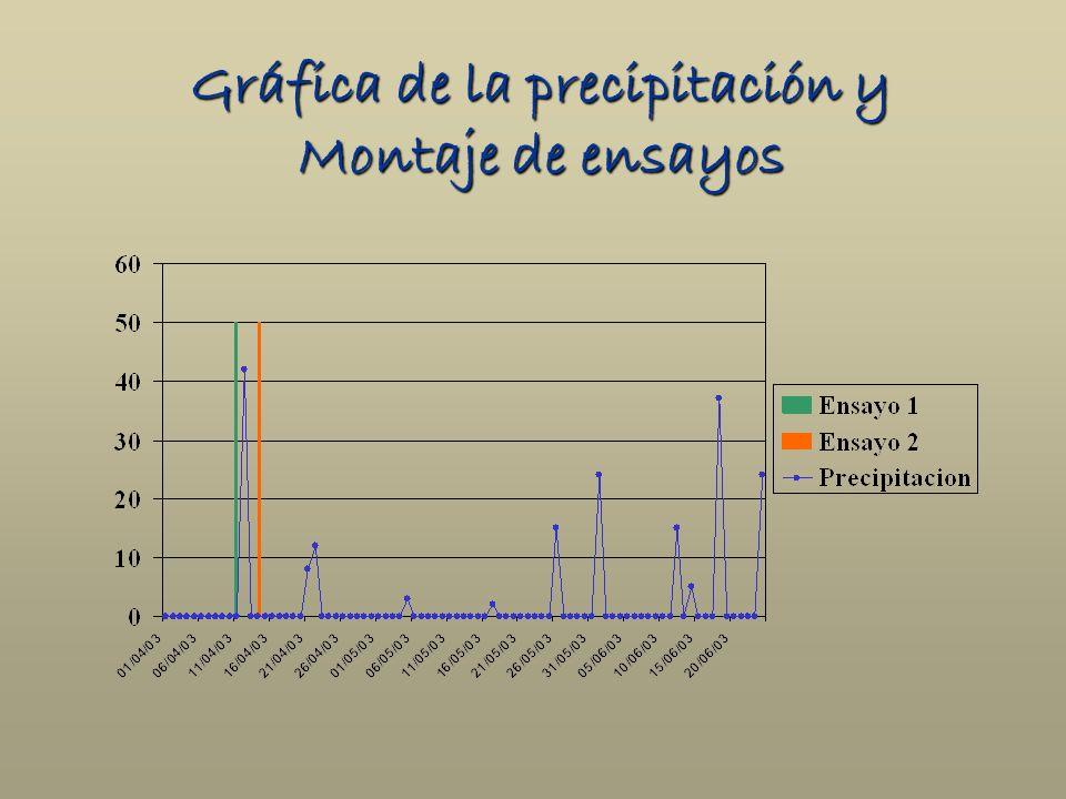Gráfica de la precipitación y Montaje de ensayos