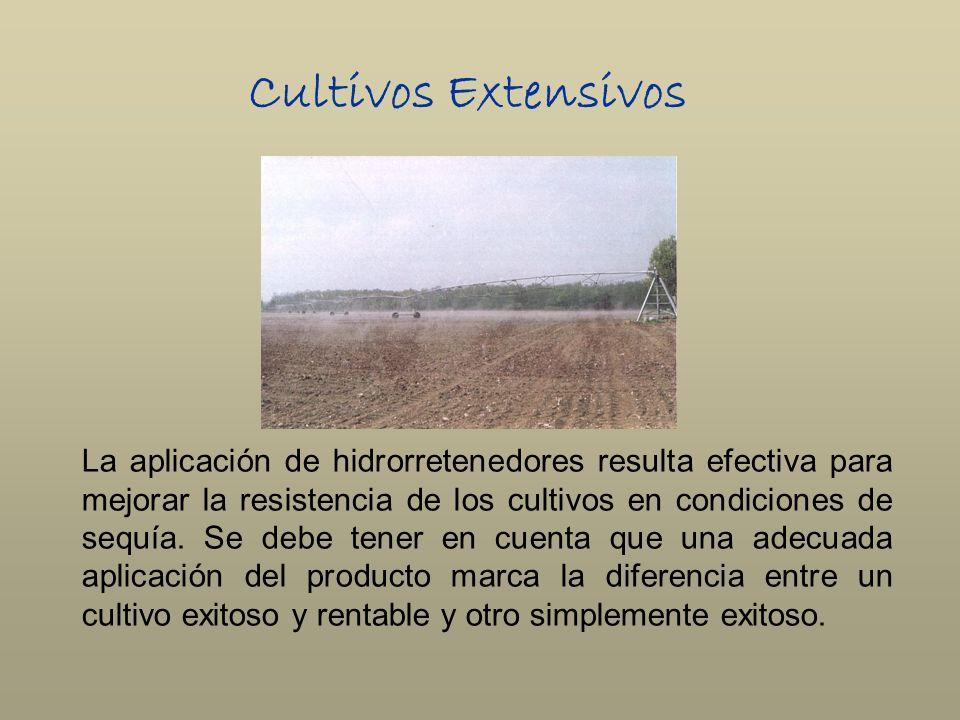 Cultivos Extensivos