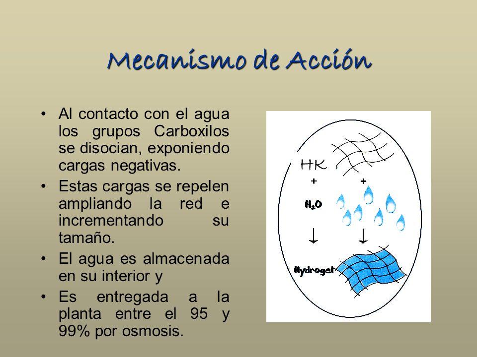 Mecanismo de Acción Al contacto con el agua los grupos Carboxilos se disocian, exponiendo cargas negativas.