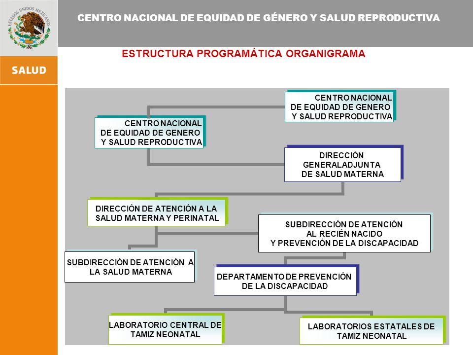 ESTRUCTURA PROGRAMÁTICA ORGANIGRAMA