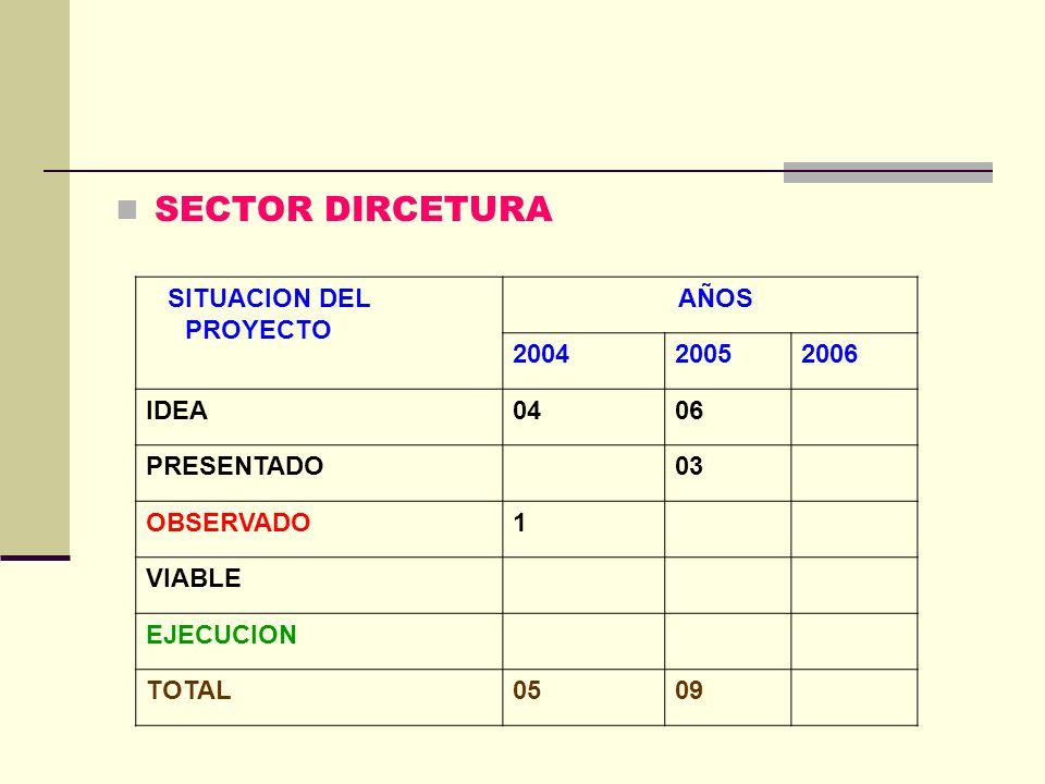 SECTOR DIRCETURA SITUACION DEL PROYECTO AÑOS 2004 2005 2006 IDEA 04 06