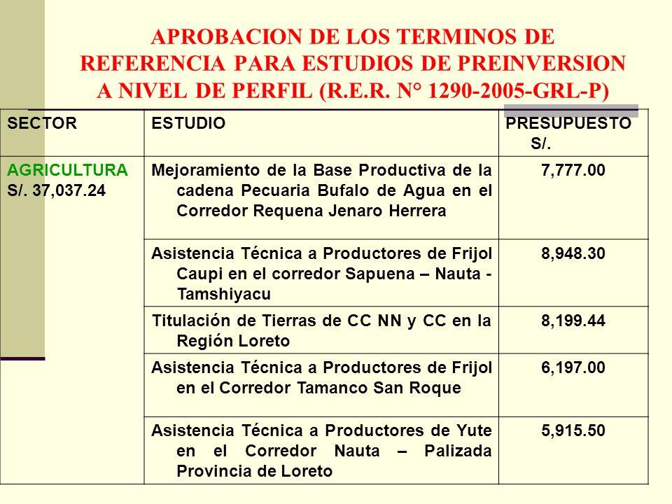 APROBACION DE LOS TERMINOS DE REFERENCIA PARA ESTUDIOS DE PREINVERSION A NIVEL DE PERFIL (R.E.R. N° 1290-2005-GRL-P)