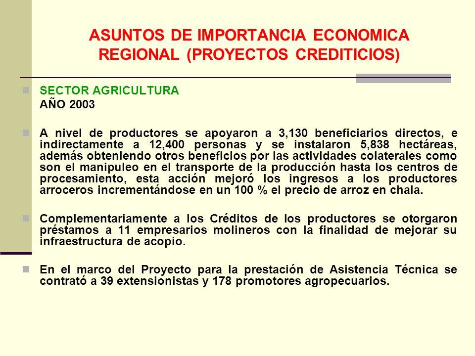ASUNTOS DE IMPORTANCIA ECONOMICA REGIONAL (PROYECTOS CREDITICIOS)