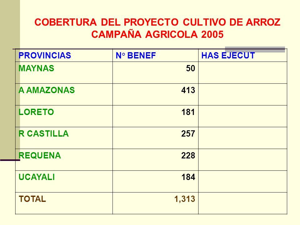 COBERTURA DEL PROYECTO CULTIVO DE ARROZ CAMPAÑA AGRICOLA 2005