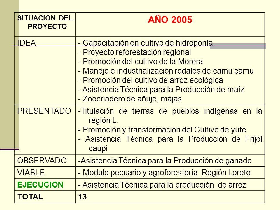 AÑO 2005 IDEA - Capacitación en cultivo de hidroponía
