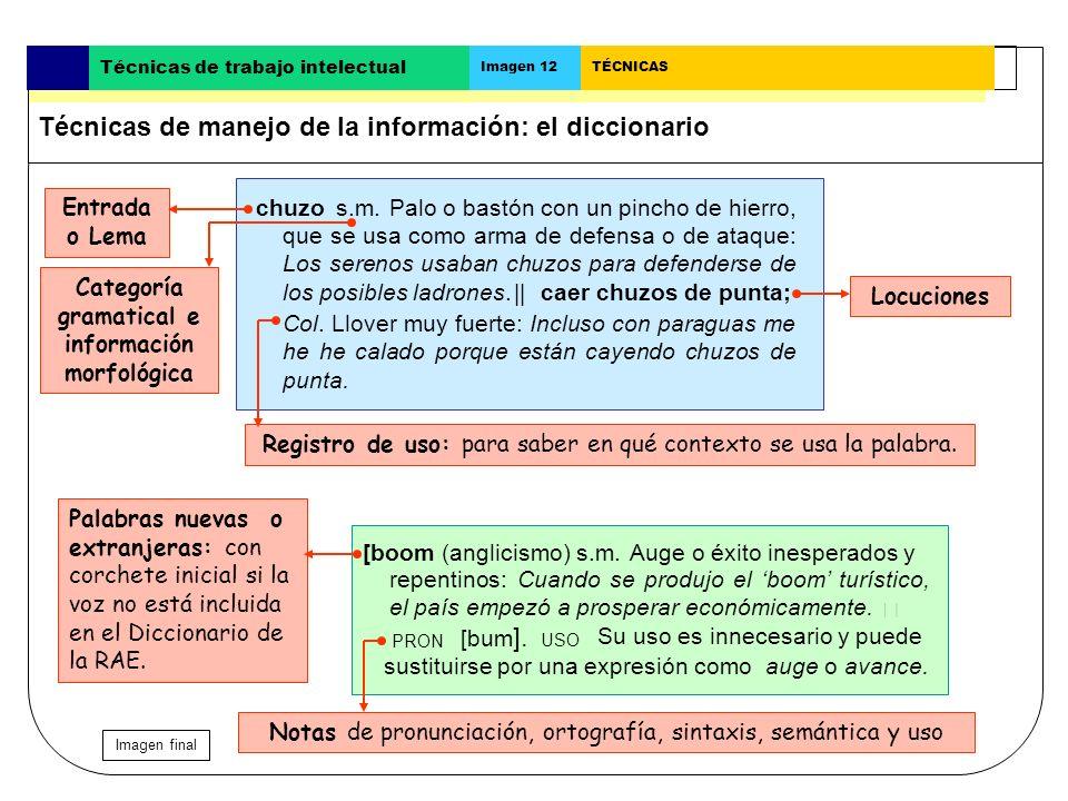 Categoría gramatical e información morfológica
