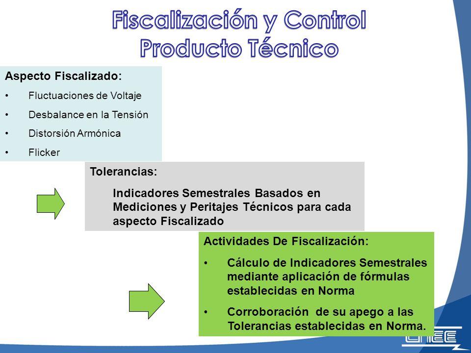 Fiscalización y Control Producto Técnico