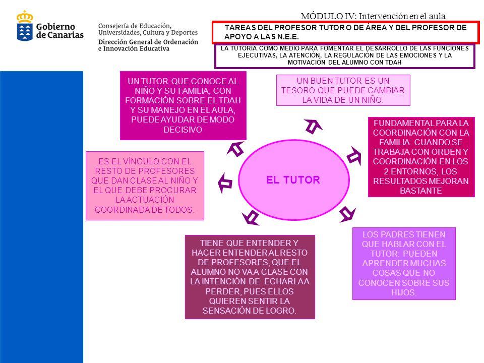 EL TUTOR MÓDULO IV: Intervención en el aula