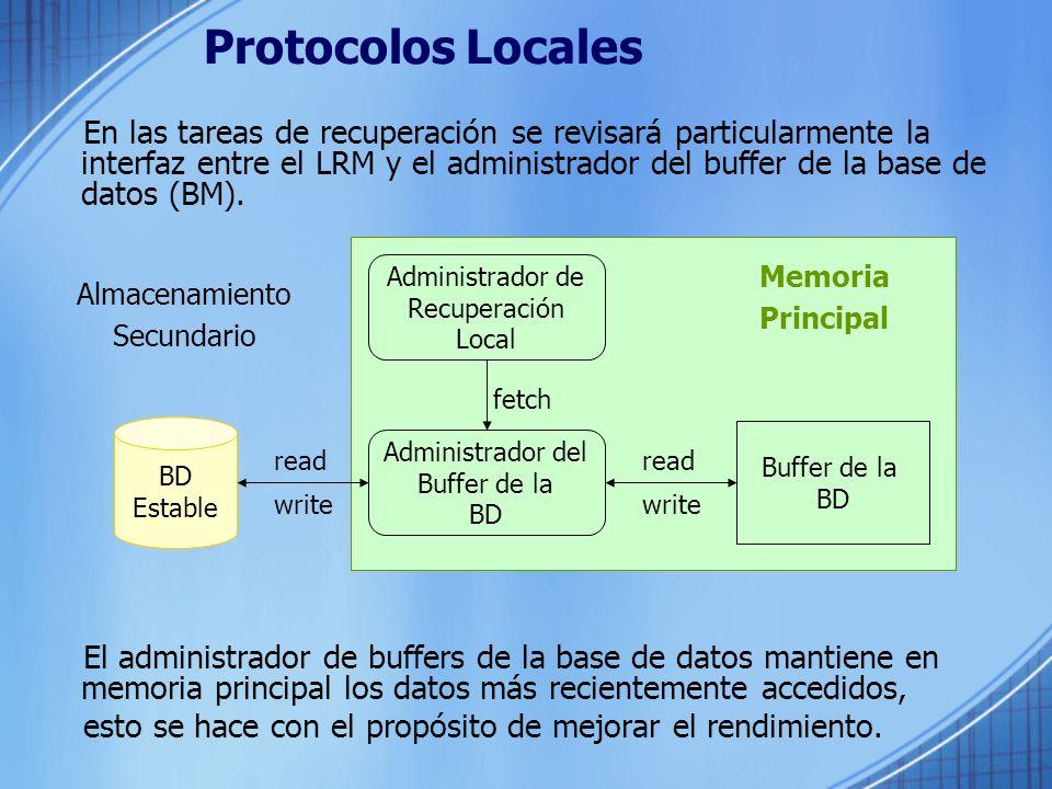 Protocolos Locales
